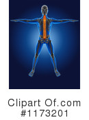 Royalty-Free (RF) Anatomy Clipart Illustration #1173201