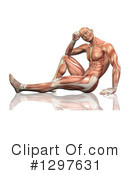 Anatomy Clipart #1297631 by KJ Pargeter
