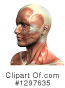 Anatomy Clipart #1297635 by KJ Pargeter