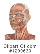 Anatomy Clipart #1299630 by KJ Pargeter