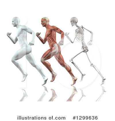 Anatomy Clipart #1299636 by KJ Pargeter