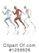 Royalty-Free (RF) Anatomy Clipart Illustration #1299636