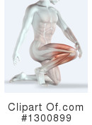 Anatomy Clipart #1300899 by KJ Pargeter
