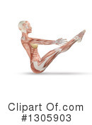 Royalty-Free (RF) Anatomy Clipart Illustration #1305903
