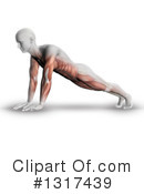 Anatomy Clipart #1317439 by KJ Pargeter