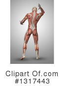 Anatomy Clipart #1317443 by KJ Pargeter