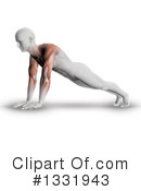 Anatomy Clipart #1331943 by KJ Pargeter