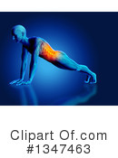 Anatomy Clipart #1347463 by KJ Pargeter