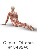 Anatomy Clipart #1349246 by KJ Pargeter