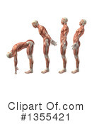 Anatomy Clipart #1355421 by KJ Pargeter