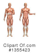 Anatomy Clipart #1355423 by KJ Pargeter