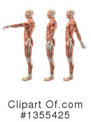 Anatomy Clipart #1355425 by KJ Pargeter