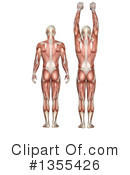 Anatomy Clipart #1355426 by KJ Pargeter