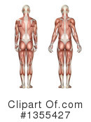 Anatomy Clipart #1355427 by KJ Pargeter