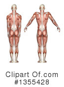 Anatomy Clipart #1355428 by KJ Pargeter
