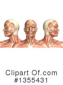 Anatomy Clipart #1355431 by KJ Pargeter