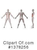 Anatomy Clipart #1378256 by KJ Pargeter