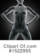 Anatomy Clipart #1522955 by KJ Pargeter