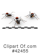 Royalty-Free (RF) Ant Clipart Illustration #42455