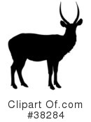 Antelope Clipart #38284 by dero