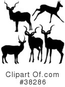 Antelope Clipart #38286 by dero