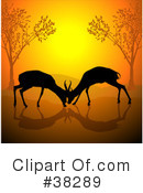 Antelope Clipart #38289 by dero