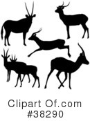 Antelope Clipart #38290 by dero