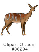 Antelope Clipart #38294 by dero