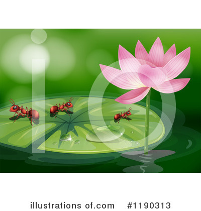Water Lily Clipart #1190313 by Graphics RF