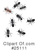 Royalty-Free (RF) Ants Clipart Illustration #25111