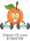 Apricot Clipart #1664709 by Morphart Creations