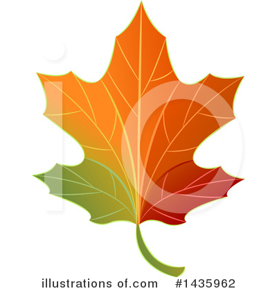 Autumn Leaf Clipart #1435962 by BNP Design Studio