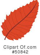 Royalty-Free (RF) Autumn Leaf Clipart Illustration #50842