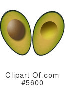 Royalty-Free (RF) Avocado Clipart Illustration #5600