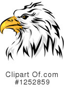 Bald Eagle Clipart #1252859