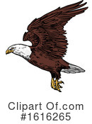 Bald Eagle Clipart #1616265 by Vector Tradition SM