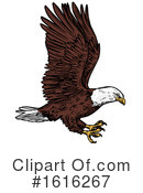 Bald Eagle Clipart #1616267 by Vector Tradition SM