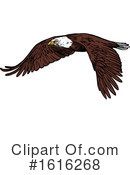 Bald Eagle Clipart #1616268 by Vector Tradition SM