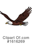 Bald Eagle Clipart #1616269 by Vector Tradition SM