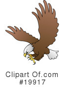 Royalty-Free (RF) Bald Eagle Clipart Illustration #19917