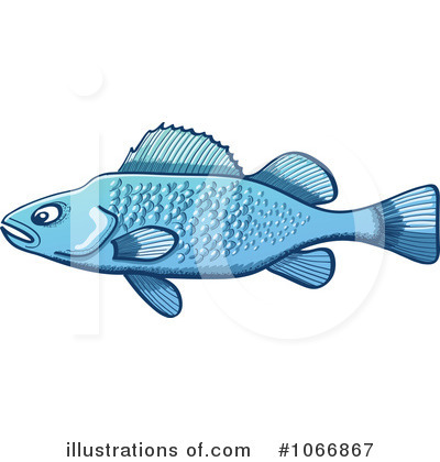 Fish Clipart #1066867 by Zooco