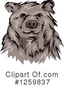 Royalty-Free (RF) Bear Clipart Illustration #1259837