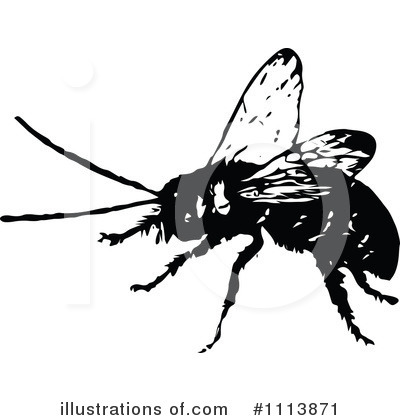 Bees Clipart #1113871 by Prawny Vintage