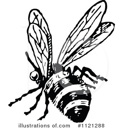 Bee Clipart #1121288 by Prawny Vintage