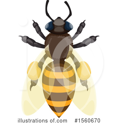 Bee Clipart #1560670 by Vector Tradition SM