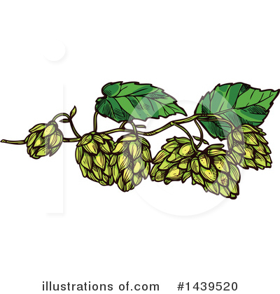 Hops Clipart #1439520 by Vector Tradition SM