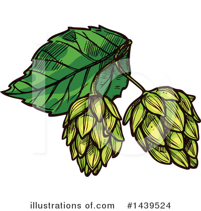 Hops Clipart #1439524 by Vector Tradition SM
