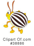 Beetle Clipart #38886