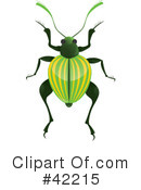 Beetle Clipart #42215