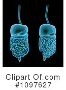 Biology Clipart #1097627 by Mopic